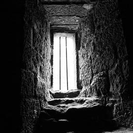 Scott Hill - Dark View
