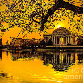 Dawn At The Jefferson Memorial  by Nick Zelinsky