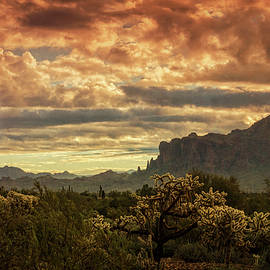 Saija Lehtonen - Desert Dawn Skies