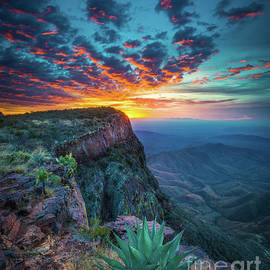 Dawn in the Chisos by Inge Johnsson
