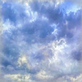 Teresa Wilson - Dawns Early Light