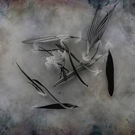 Hugh Smith - Dead Flower