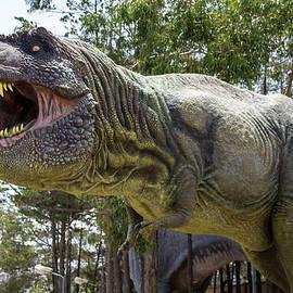 Venetia Featherstone-Witty - Deadly  Dinosaur Tyrannosaurus Rex