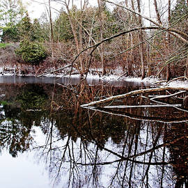 Debbie Oppermann - December At The Pond