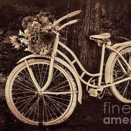 Janice Rae Pariza - Dedication Bicycle in Sepia