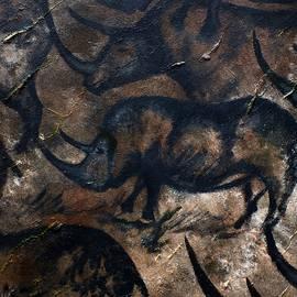 Deep Cave Rhino by Philip Harvey