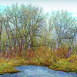 Joel Bruce Wallach - Deep Forest River