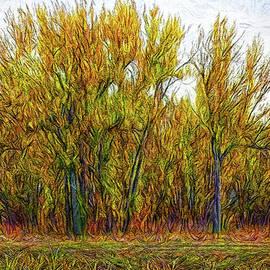 Joel Bruce Wallach - Deep Golden Forest