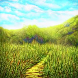 Joel Bruce Wallach - Deep Meadow Tranquility