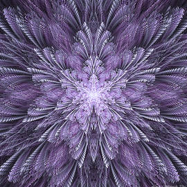 Linda Whiteside - Deep Purple Dreams