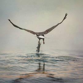 Jai Johnson - Deep Sea Fishing 2