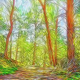 Joel Bruce Wallach - Deep Woods Dreamtime