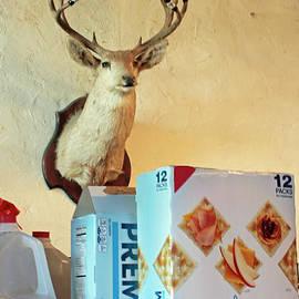 Deer At Salt Lick by Joe Pratt