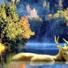 Janette Boyd - Deer in Autumn