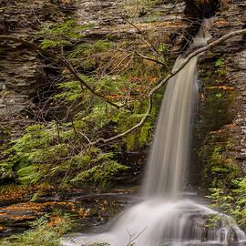 Deer Leap Falls by Sara Hudock