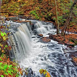 Marcia Colelli - Delaware Falls