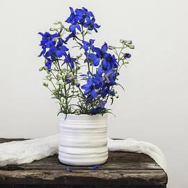 Delphinium Blue by Kim Hojnacki
