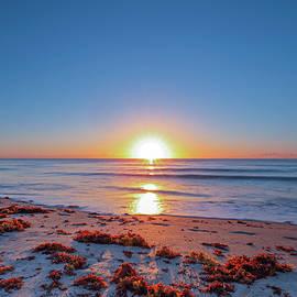 Juergen Roth - Delray Beach Sunrise