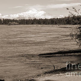 Susitna River And Denali Sepia by Connie Fox
