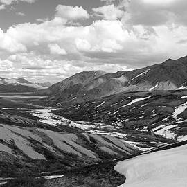 Sierra Vance - Denali View Black and White