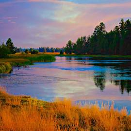 Deschutes River 2 by Sherri Meyer
