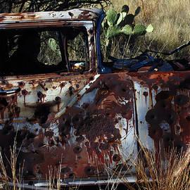 Desert Car by John Meader