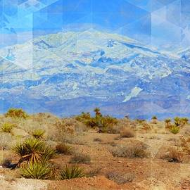 Desert Contrasts by Michelle Dallocchio