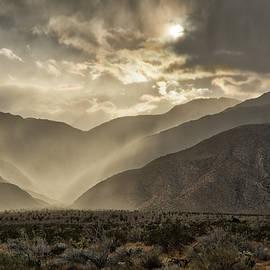 William Ferry - Desert Deluge