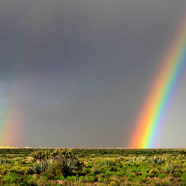 Bonnie Follett - Desert Double Rainbow
