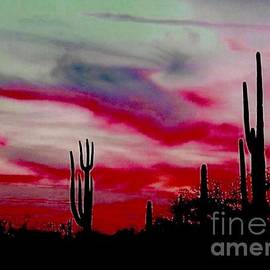 Joseph Baril - Desert Sunset Northern Lights Version