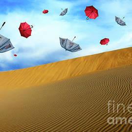 Desert Winds by Bob Christopher
