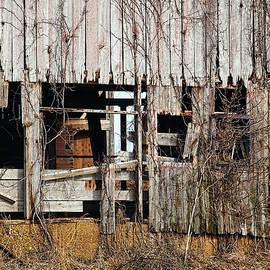 William Sturgell - Deteriorating Barn