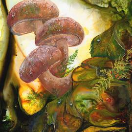 Sherry Shipley - Dew Drop Mushrooms