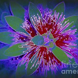 Diann Fisher - Digital Flower Pop Art