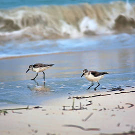 Dinner time at the beach by Tatiana Travelways