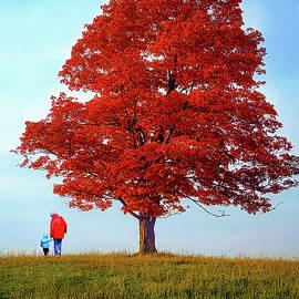Discovering Autumn by Steve Harrington