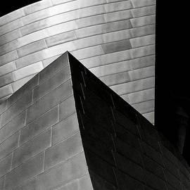 Disney Concert Hall Black and White