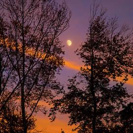 Karol Livote - Distant Moon