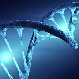 DNA structure illuminated - Johan Swanepoel