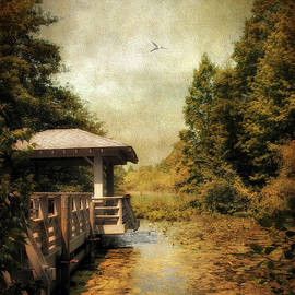 Jessica Jenney - Dock on the Wetlands