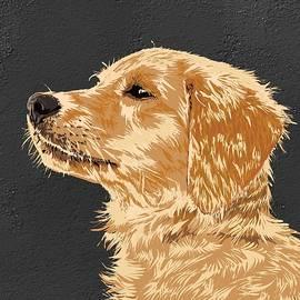 Dog 7 by Nesrin Gulistan