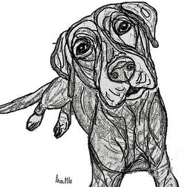 Dog Sketch In Charcoal 10 by Ania M Milo