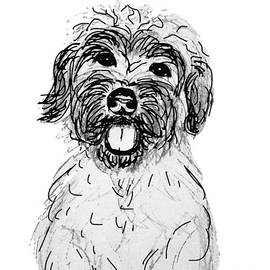 Ania M Milo - Dog Sketch in Charcoal 6
