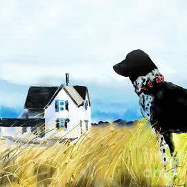 Waiting dog  by Mark Tonelli
