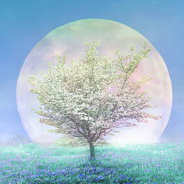 Dogwoods on a Blue Moon by Debra and Dave Vanderlaan