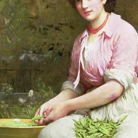 Dolly - Samuel Luke Fildes