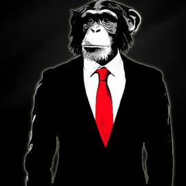 Domesticated Monkey