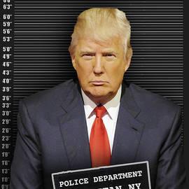 Donald Trump Mugshot by Tony Rubino