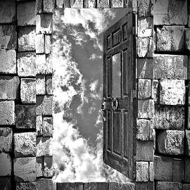 Suzanne Stout - Door in the Sky