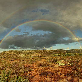 Double Rainbow Over Desert Txt by Theo O'Connor